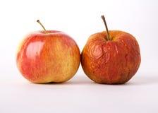 Δύο μήλα Στοκ Εικόνες