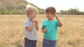 Δύο μικρά αγόρια που παίζουν στον τομέα στο ηλιοβασίλεμα απόθεμα βίντεο