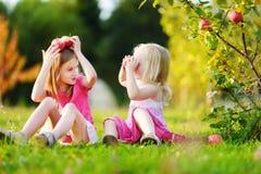 Δύο μικρά κορίτσια που επιλέγουν τα μήλα σε έναν κήπο Στοκ εικόνα με δικαίωμα ελεύθερης χρήσης