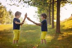 Δύο μικρά παιδιά, που κρατούν τα ξίφη, που λάμπουν με ένα τρελλό πρόσωπο σε κάθε ένα στοκ φωτογραφία με δικαίωμα ελεύθερης χρήσης