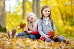 Δύο μικρές αδελφές που έχουν τη διασκέδαση μαζί στο όμορφο πάρκο φθινοπώρου στοκ φωτογραφία