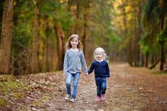 Δύο μικρές αδελφές που έχουν τη διασκέδαση στα ξύλα Στοκ Φωτογραφίες