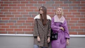 Δύο μοντέρνα κορίτσια που θέτουν ενάντια στο τουβλότοιχο έξω, όμορφο βλέμμα, αστικά πρότυπα φιλμ μικρού μήκους