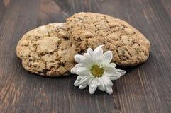Δύο μπισκότα με τα δημητριακά Στοκ Εικόνα
