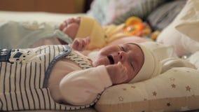 Δύο μωρά βρίσκονται να φωνάξουν πλατών τους Οικογένεια Παιδιά φιλμ μικρού μήκους