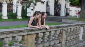 Δύο νέα κορίτσια που στέκονται κοντά στην πέτρα περιφράζουν, ξοδεύουν τη χρονική ομιλία απόθεμα βίντεο