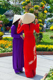 Δύο νέες βιετναμέζικες γυναίκες στο παραδοσιακό φόρεμα AO Dai Στοκ Εικόνα