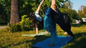 Δύο νέες γυναίκες που κάνουν τις ασκήσεις γιόγκας στο πάρκο - μια γυναίκα έχει τα μακροχρόνια μπλε dreadlocks απόθεμα βίντεο