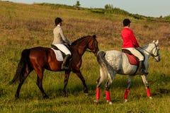 Δύο νέες γυναίκες που οδηγούν το άλογο στο πάρκο Περίπατος αλόγων το καλοκαίρι Στοκ Εικόνες