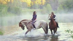 Δύο νέες γυναίκες στην πλάτη αλόγου που στέκεται στη λίμνη, οπλές αλόγων που καταβρέχει το νερό νωρίς το πρωί στο ηλιοβασίλεμα, ό απόθεμα βίντεο