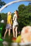 Δύο νέες κυρίες στο picic Στοκ Φωτογραφίες