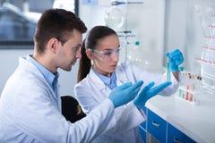 Δύο νέοι επιστήμονες που πραγματοποιούν την έρευνα και που επικεντρώνονται σε την στοκ εικόνα