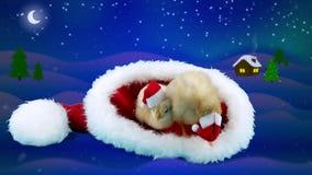 Δύο νέοι κόκκορες στο μεγάλο κόκκινο καπέλο Άγιου Βασίλη, υπόβαθρο χειμερινής νύχτας φιλμ μικρού μήκους