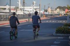 Δύο νεαροί άνδρες οδηγούν τα ποδήλατά τους κατά μήκος του θαλάσσιου περίπατου της μαρίνας del στοκ εικόνες