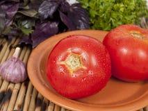 Δύο ντομάτες σε ένα πιάτο Στοκ Φωτογραφία