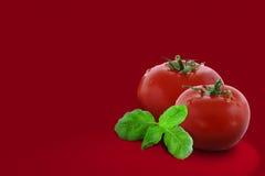 Δύο ντομάτες Στοκ εικόνες με δικαίωμα ελεύθερης χρήσης