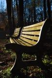 Δύο ξύλινοι πάγκοι στο δημόσιο κήπο Στοκ εικόνες με δικαίωμα ελεύθερης χρήσης