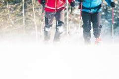 Δύο ορειβάτες κατά τη διάρκεια μιας χιονοθύελλας στοκ εικόνα