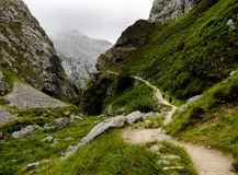 Δύο ορεσίβιοι που πραγματοποιούν οδοιπορικό στα βουνά στοκ εικόνες
