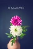 Δύο λουλούδια ως στις 8 Μαρτίου, οκτώ αριθμός Στοκ Φωτογραφία