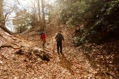 Δύο οδοιπόροι που περπατούν κάτω από τα βουνά στο τοπίο φθινοπώρου Μερικοί τουρίστες που κατεβαίνουν το βουνό Στοκ Εικόνες