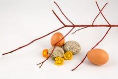 Δύο πέτρα και δύο αυγά Στοκ εικόνα με δικαίωμα ελεύθερης χρήσης