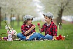 Δύο παιδιά, αδελφοί αγοριών, που έχουν τη διασκέδαση με τα αυγά Πάσχας στο π Στοκ φωτογραφίες με δικαίωμα ελεύθερης χρήσης