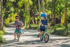 Δύο παιδιά μικρών παιδιών που έχουν τη διασκέδαση στο ποδήλατο ισορροπίας σε μια χώρα Στοκ εικόνες με δικαίωμα ελεύθερης χρήσης