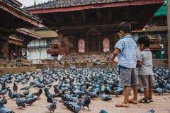 Δύο παιδιά που ταΐζουν τα περιστέρια στην πλατεία Durbar στο Κατμαντού στοκ εικόνες με δικαίωμα ελεύθερης χρήσης