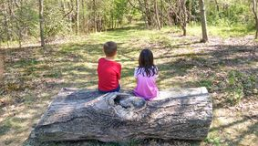 Δύο παιδιά που συλλογίζονται τη ζωή στο δάσος Στοκ Φωτογραφία