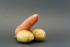 Δύο πατάτες και ένα καρότο Στοκ φωτογραφία με δικαίωμα ελεύθερης χρήσης