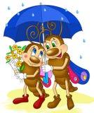 Δύο πεταλούδες κάτω από την ομπρέλα, κινούμενα σχέδια εντόμων Στοκ εικόνες με δικαίωμα ελεύθερης χρήσης
