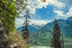Δύο πεύκα στο μπλε ουρανό υποβάθρου με τα σύννεφα και Himalayan mountans Στοκ Φωτογραφίες
