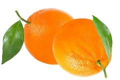 Δύο πορτοκάλια με το φύλλο που απομονώνεται στο λευκό Στοκ Εικόνες