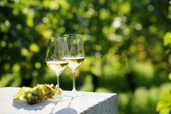 Δύο ποτήρια του άσπρου κρασιού Στοκ Εικόνα