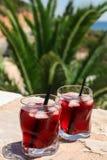 Δύο ποτήρια του θερινού κόκκινου κοκτέιλ με τον πάγο στο φοίνικα διακλαδίζονται υπόβαθρο, έννοια καλοκαιρινών διακοπών Στοκ Εικόνα