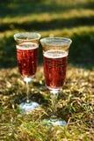 Δύο ποτήρια του κόκκινου κρασιού στον κήπο στοκ φωτογραφία