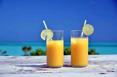Δύο ποτήρια του χυμού από πορτοκάλι Στοκ Εικόνες