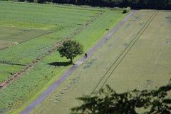 Δύο ποδηλάτες σε μια πορεία ποδηλάτων Στοκ εικόνες με δικαίωμα ελεύθερης χρήσης