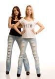 Δύο προκλητικές νέες γυναίκες με την τοποθέτηση στοκ εικόνες