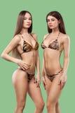 Δύο προκλητικές γυναίκες brunette που φορούν το μαγιό που απομονώνεται στο πράσινο υπόβαθρο σώμα τέλειο Έννοια θερινών διαφημίσεω Στοκ φωτογραφία με δικαίωμα ελεύθερης χρήσης