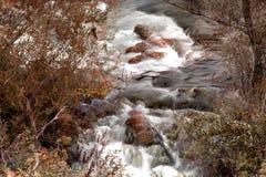 Δύο ρεύματα ποταμών στα χρώματα φθινοπώρου Στοκ εικόνες με δικαίωμα ελεύθερης χρήσης