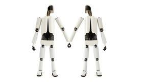 Δύο ρομπότ κρατούν τα χέρια Στοκ φωτογραφίες με δικαίωμα ελεύθερης χρήσης