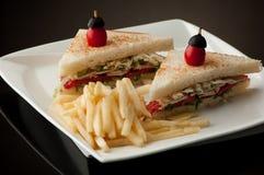 Δύο σάντουιτς σε ένα πιάτο με τα τηγανητά Στοκ εικόνες με δικαίωμα ελεύθερης χρήσης