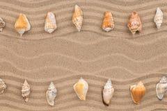 Δύο σειρές των θαλασσινών κοχυλιών που βρίσκονται στην άμμο, με το διάστημα για το κείμενο Στοκ Εικόνα