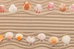 Δύο σειρές των θαλασσινών κοχυλιών που βρίσκονται στην άμμο, με το διάστημα για το κείμενο Στοκ φωτογραφία με δικαίωμα ελεύθερης χρήσης