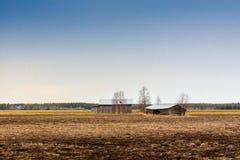 Δύο σιταποθήκες σε έναν πρόωρο τομέα ανοίξεων Στοκ εικόνες με δικαίωμα ελεύθερης χρήσης
