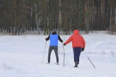 Δύο σκιέρ που εκπαιδεύουν το σκι που οργανώνεται στο χιονώδες δάσος Στοκ φωτογραφίες με δικαίωμα ελεύθερης χρήσης