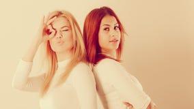 Δύο τρελλά κορίτσια που παίζουν γύρω από από κοινού Στοκ εικόνες με δικαίωμα ελεύθερης χρήσης