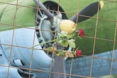 Δύο τριαντάφυλλα σε ένα δικτυωτό πλέγμα ενάντια στις λεπίδες αεροπλάνων στοκ εικόνα
